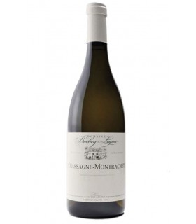 Chassagne-Montrachet blanc 2015 - Bachey-Legros