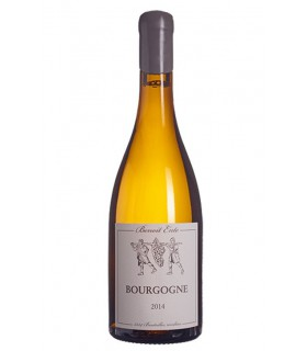 Bourgogne Chardonnay 2015 - Benoit Ente