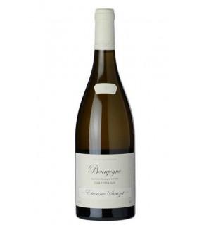 Bourgogne Chardonnay 2017 - Etienne Sauzet