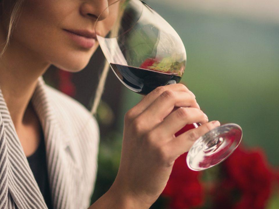 dégustation de vins bios
